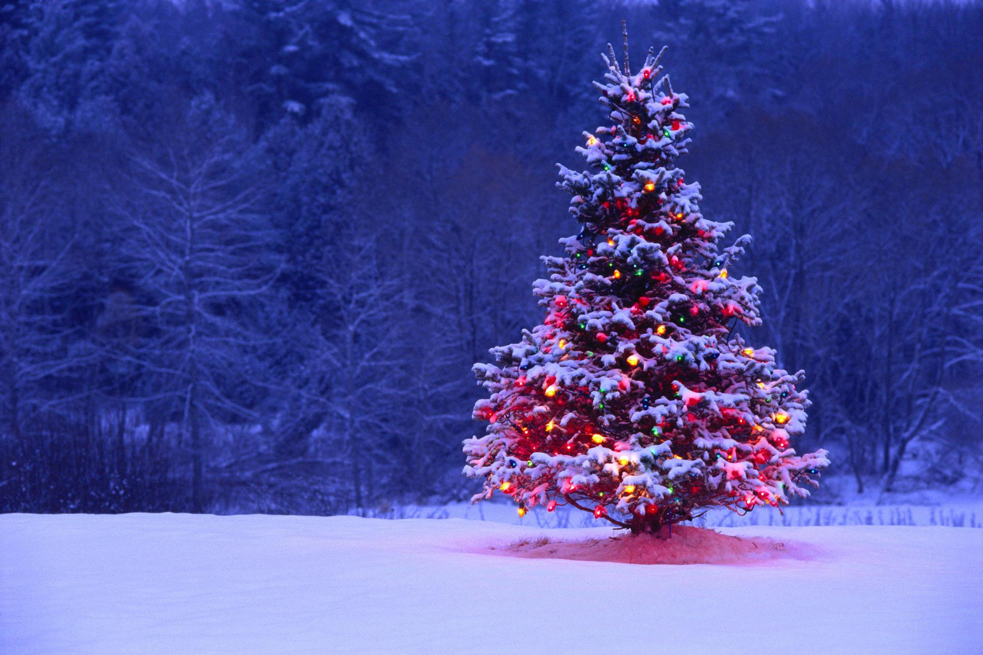 Árbol navidad Ravanetto