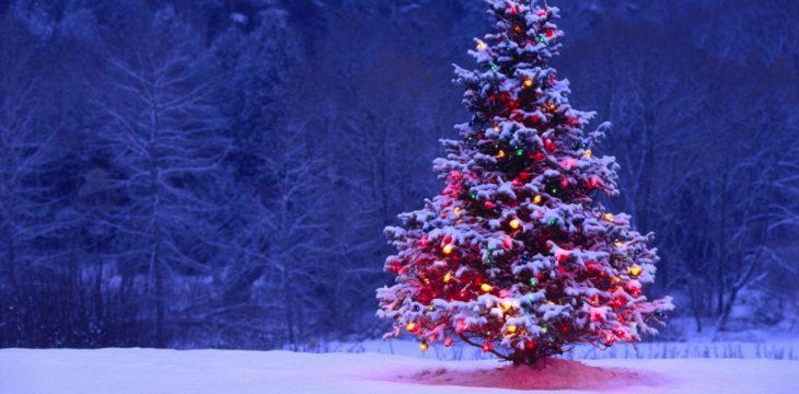Grandes regalos navideños personalizados este año