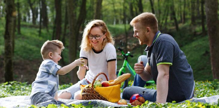 Accesorios de picnic personalizados para el verano