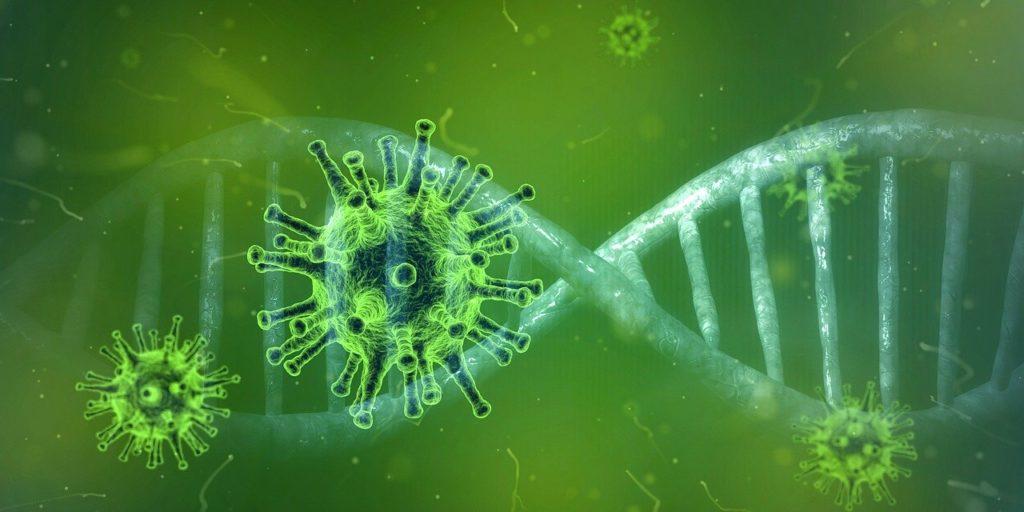Coronavirus en Ravanetto
