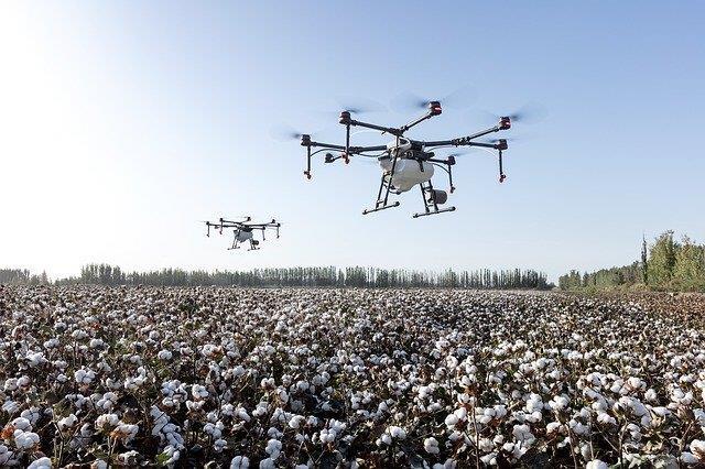 Algodón dron